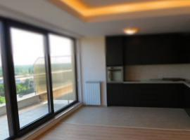 Herestrau Penthouse for Rent