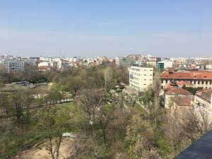 View from apartment to Cismigiu parc