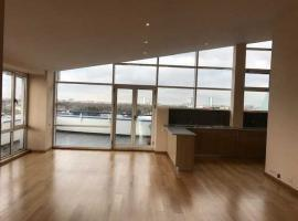 Kiseleff Penthouse Apartment for Rent